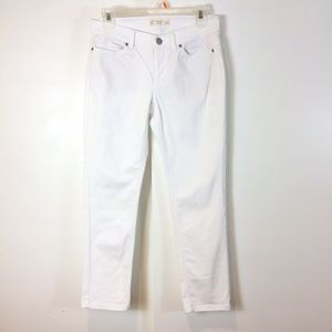 J. Jill Authentic Fit Slim Ankle Leg Jeans